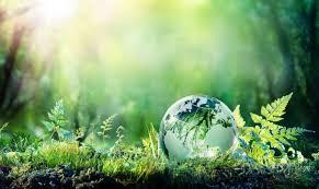 ĐỀ THI IELTS READING VÀ ĐÁP ÁN- The Truth about the Environment